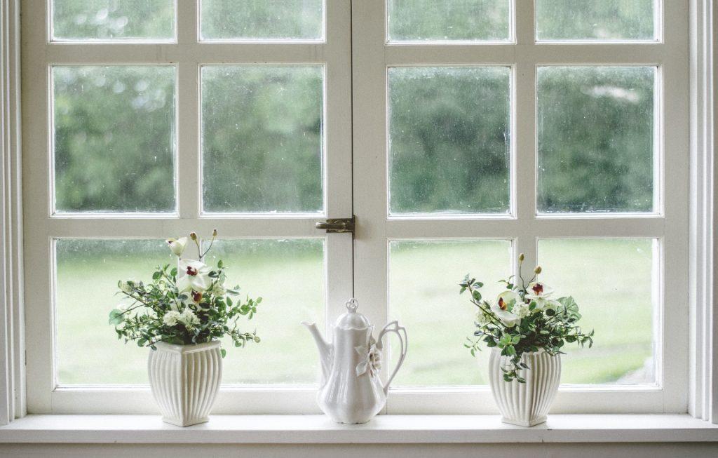 White window pane with two pot plants